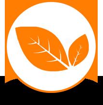 logo_naturelle_slider_accueil pizarras naturales de españa
